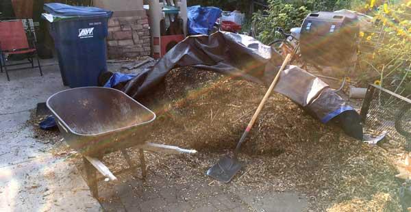 wood chip pile 2